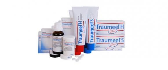 Traumeel Ointment, T-Relief, Iodosorb Gel, Medihoney Gel, and B&W Ointment for Wound Treatment and Pain Relief